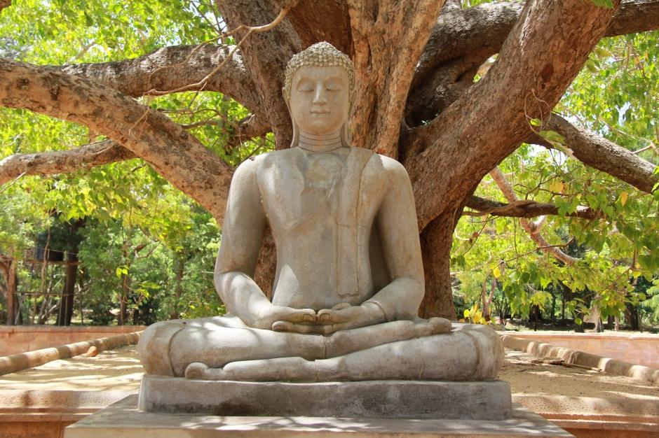 La découverte du yoga à 4O ans