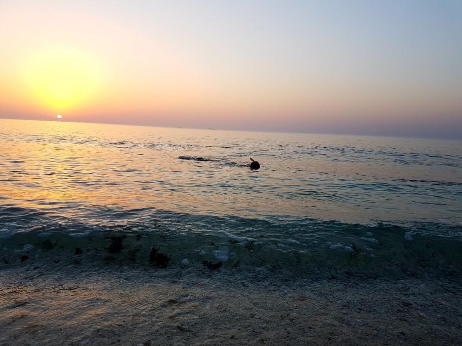 Nager avec une tortue à Oman par elle a 40 ans