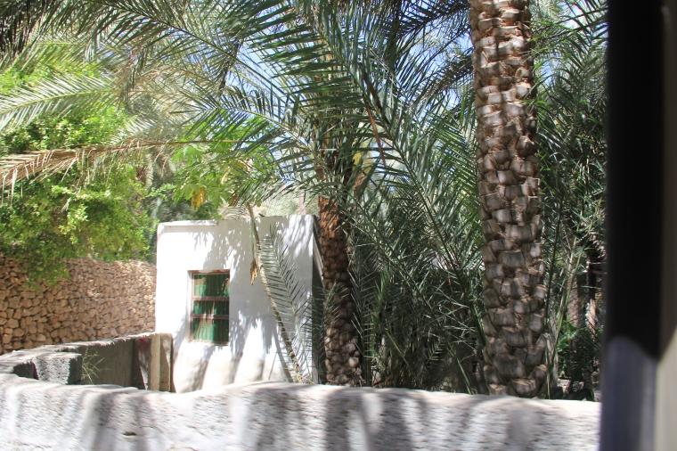 Sur la route du wadi Tiwi à Oman par elle a 40 ans